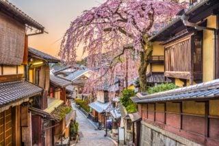 Kyoyo Japan
